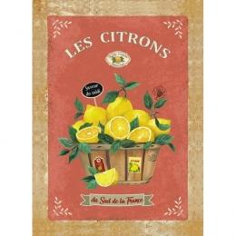 Torchon, Geschirrtuch Les Citrons, Saveur du midi, ca. 50x70 cm, Baumwolle