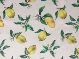 Panama Zitrus, Zitronen, Breite 160 cm